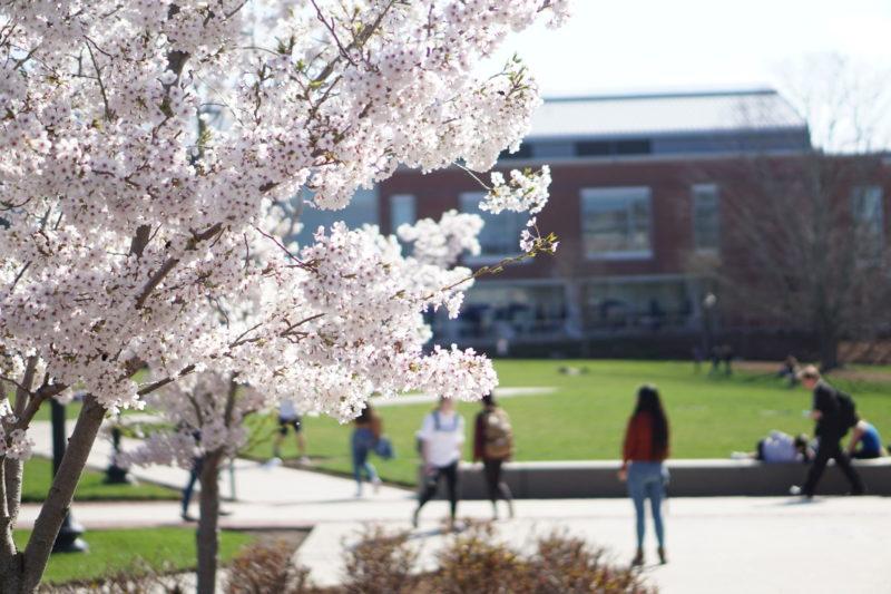 college campus i USA